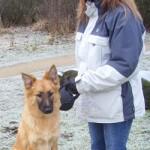 claire_rands_canine-massage
