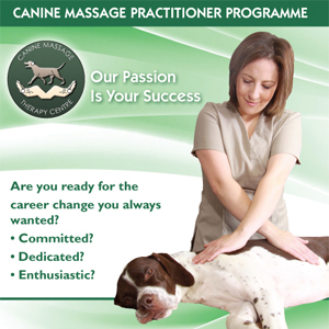 canine massage practioner programme