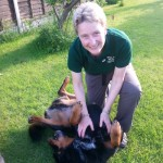 Sam massage rottweiller cross