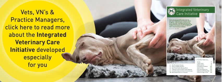 Canine Massage Guild